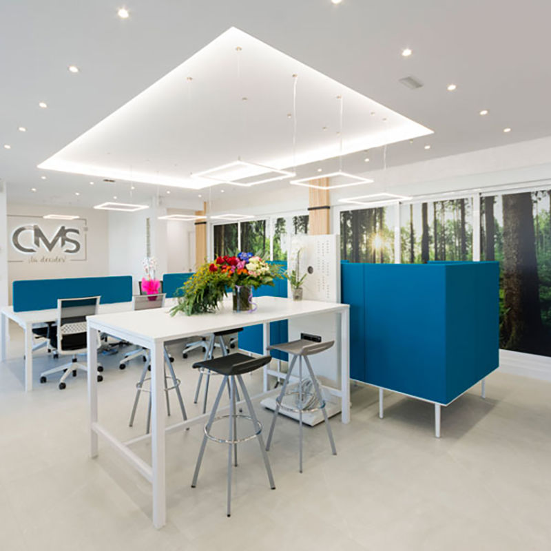 CMS Inmobiliaria