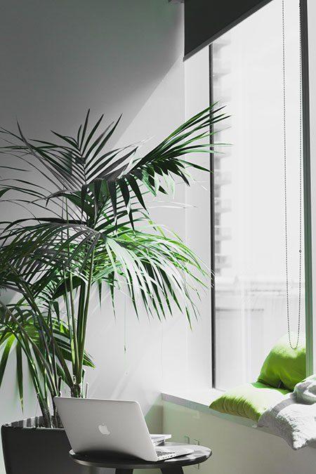 Tips para decorar oficina de abogados